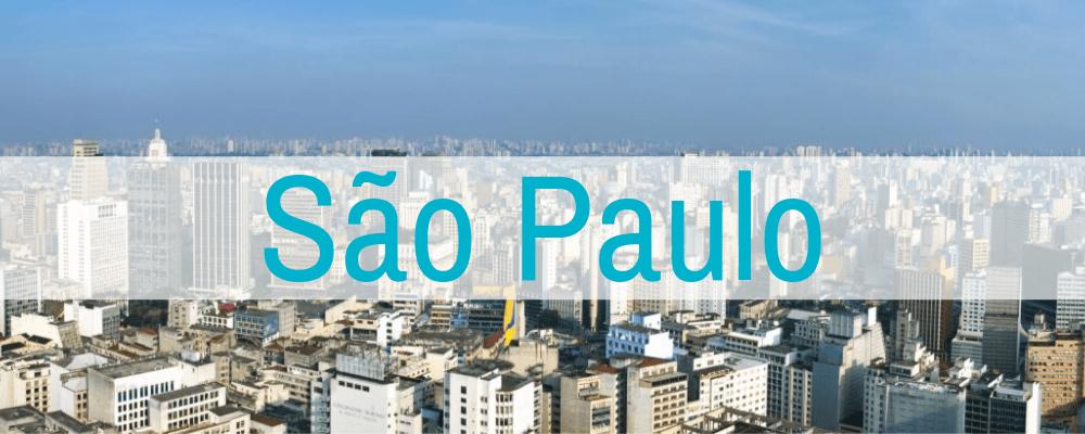 https://www.womenstartuplab.com/wp-content/uploads/2019/08/Sao-Paulo2.png